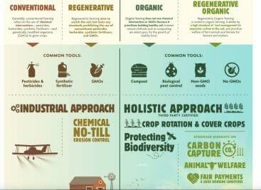 regenerative organic oatmeal
